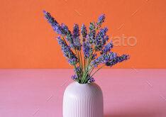 Vase of lavender flower in a pink and orange background